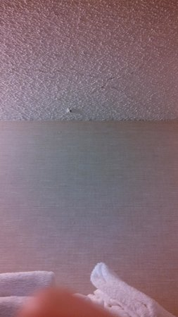 Stoney Creek Hotel & Conference Center - St. Joseph: creaked ceilings