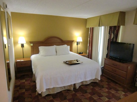 Hampton Inn & Suites Orlando International Drive North: King Bett