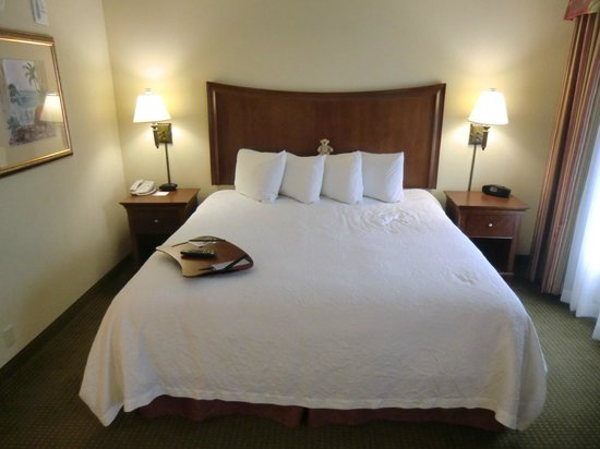 Hampton Inn & Suites Fort Myers-Estero/FGCU: King Bett