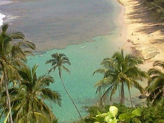 Hanalei Bay Resort照片