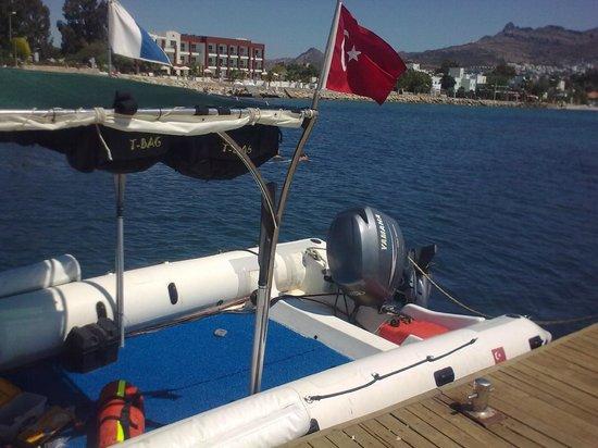 Aquanaut Diving: RIHB 2011