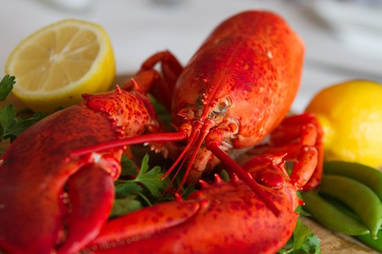 Liv's Oyster Bar: Lobster. An ingredient from one of our chef tasting menus