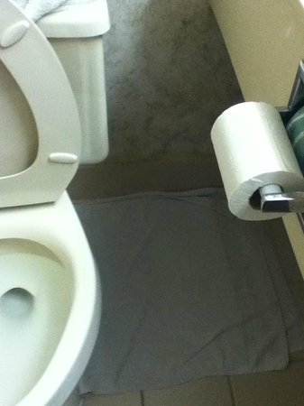 Super 8 Miamisburg Dayton S Area OH : Towel absorbing water from leaky toilet