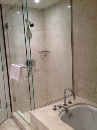 L'Hermitage Hotel: shower