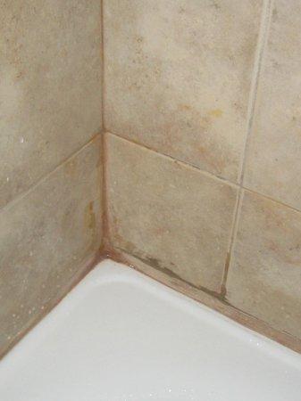 Hotel Puerta del Bosque: asi estaba la pared de la ducha....