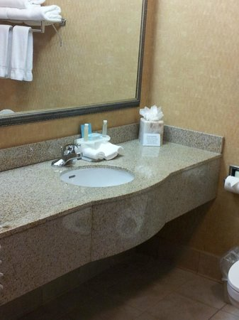 Best Western Gwinnett Center Hotel: bathroom