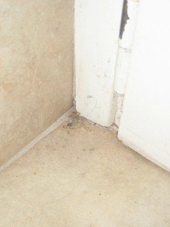 Hotel Puerta del Bosque: detras de la puerta del baño....