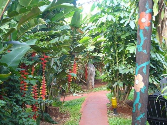 Garden Stone Hostel: Le paradisiaque passage pour  l'espace petit-déjeuner