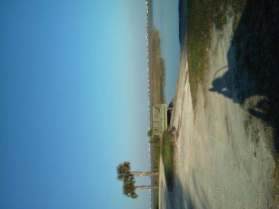 Lost at Sea Memorial at Morse Park Landing: getlstd_property_photo