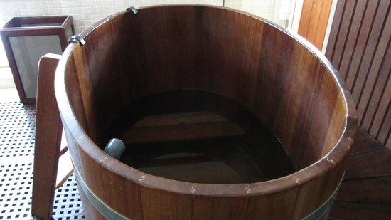 Hotel Rialto: Bath plunge