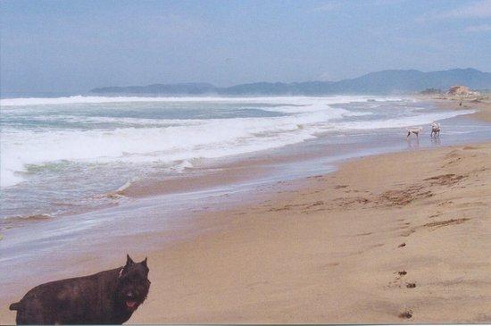 playa blanca vers zihuatanejo