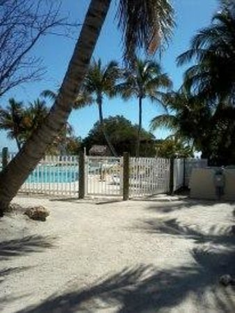 كوكونت كوف ريزورت آند مارينا: Coconut Cove Paradise !