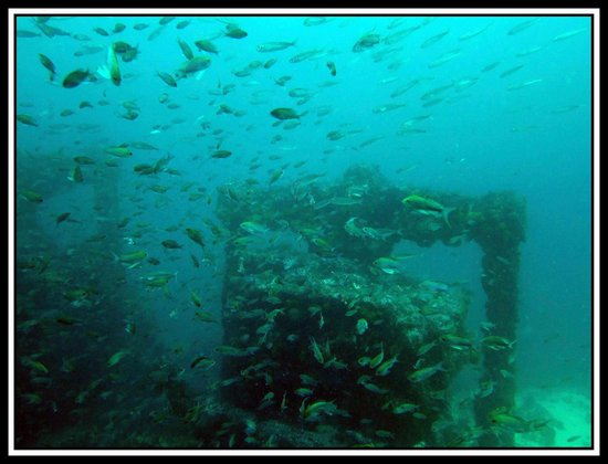 Simply Diving : A shipwreck in Tarifa