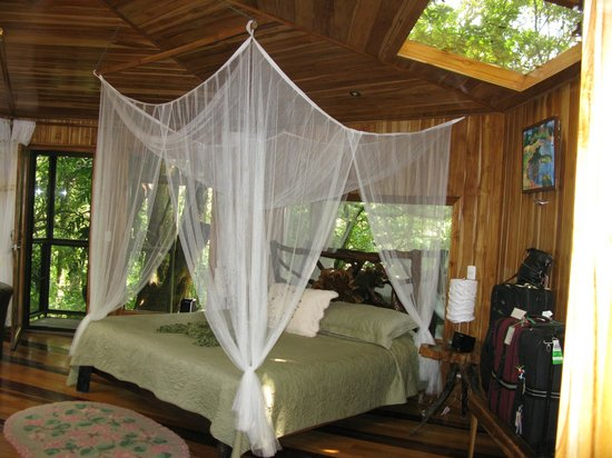 Hidden Canopy Treehouses Boutique Hotel: Glade room with king bed