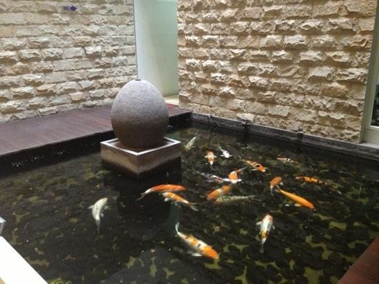 Lombok Plaza Hotel & Convention : fish pond