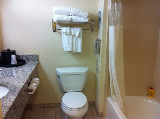 BEST WESTERN Coyote Point Inn: Baño en buen estado