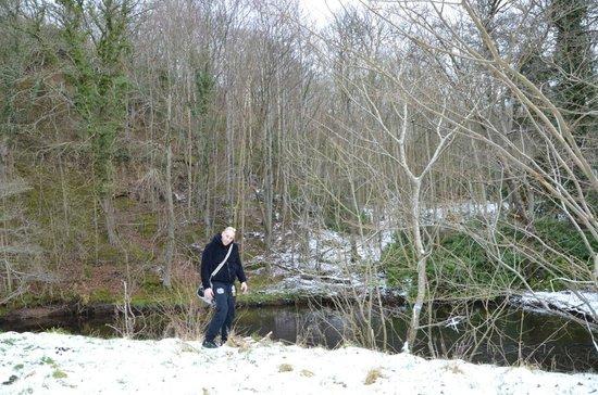 Dalhousie Castle: Snowy landscape