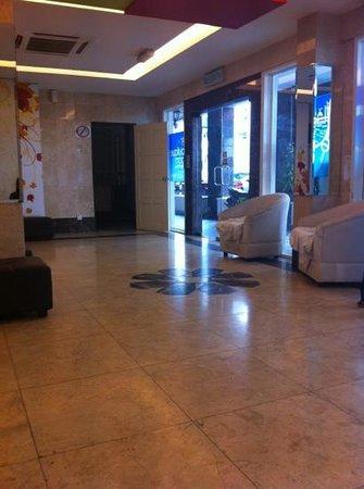 Ibiz Hotel: needs improvement