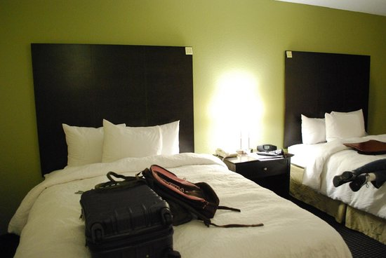 Hampton Inn and Suites Los Angeles - Anaheim - Garden Grove : 3