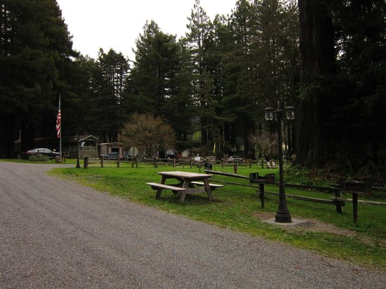 Redcrest Resort: Picnic Tables