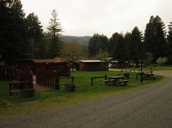 Redcrest Resort: View from the Cabin