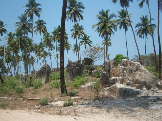 Malpe Beach: Palms on St Mary Island
