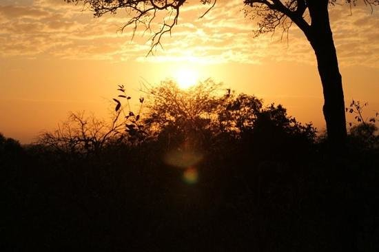 Pondoro Game Lodge: Sunset in the Kruger