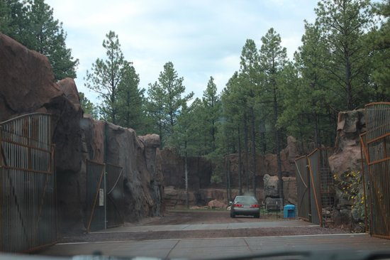Bearizona Wildlife Park: Jurassice Park like entrance