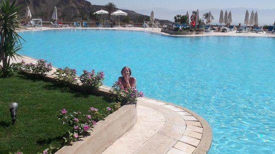 El Wekala Golf Resort: belle piscine