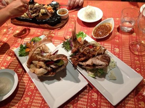 Chang Siam Thai Restaurant: whole fish - fresh snapper!