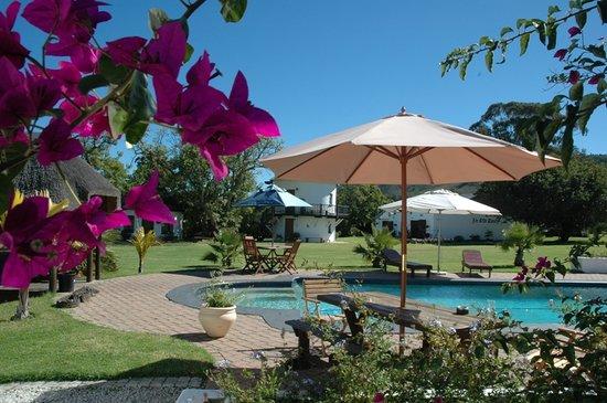 Bella Manga Country House: Our huge salt-water pool