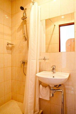 Izhora Hotel: Shower in Standart room