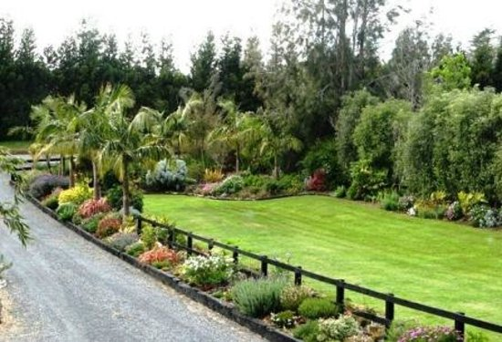 Kerikeri Holiday Cottages - Ragdoll & Black Cat: gardens