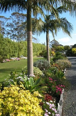 Kerikeri Holiday Cottages - Ragdoll & Black Cat: driveway