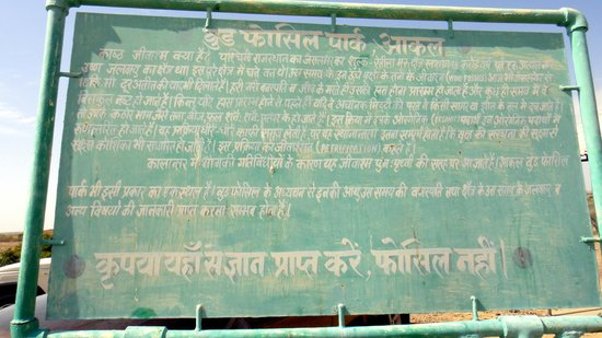 Akal Wood Fossil Park: Sign board in Hindi decrribing the wood fossils