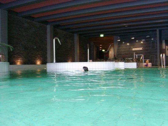 Lapland Hotel Saaga: Swimming pool