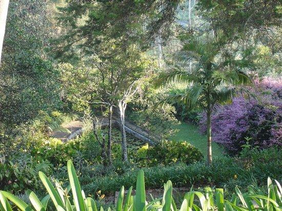 Ceylon Tea Trails - Relais & Chateaux: Superb gardens