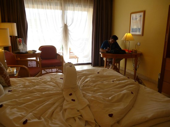 InterContinental Aqaba Resort: 14785