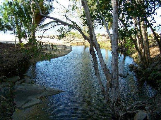 Turtle Cove Beach Resort: Turtle Cove Fresh Water Stream