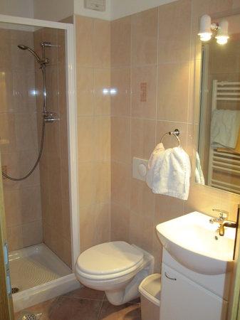 Accommodation Resman Bohinj: Bathroom