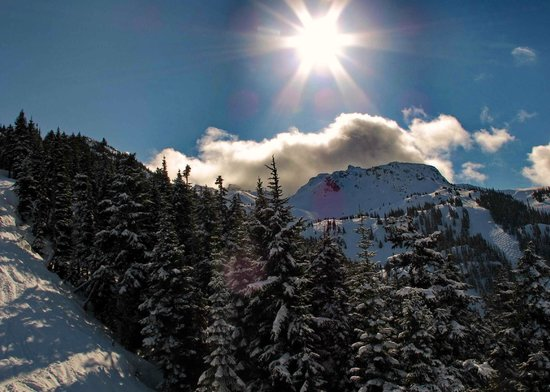 Greystone Lodge: Fresh snow and sun