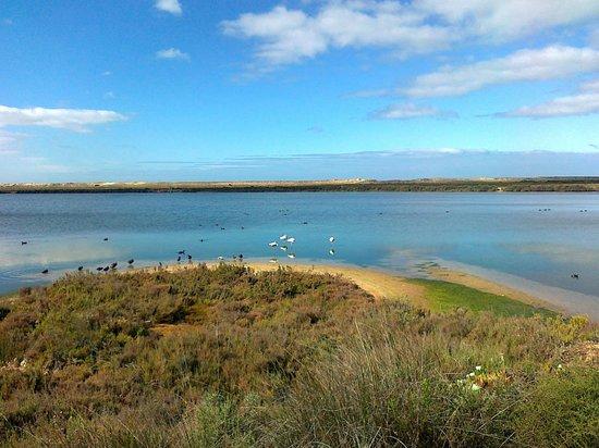 Algarve Bike Holidays: Ria Formosa