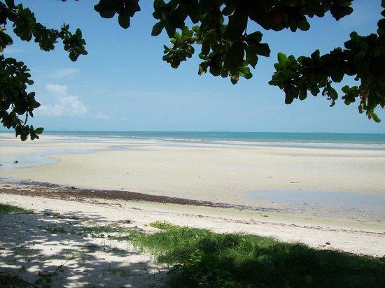Viva Vacation Resort: Meer