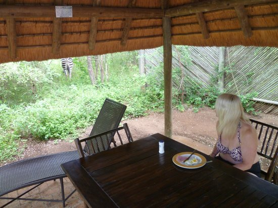 Jackalberry Ridge: Lapa /Dining area