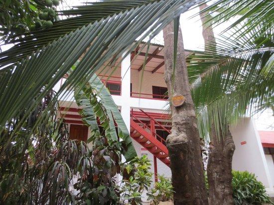Hotel Lagarta Lodge: Zimmer