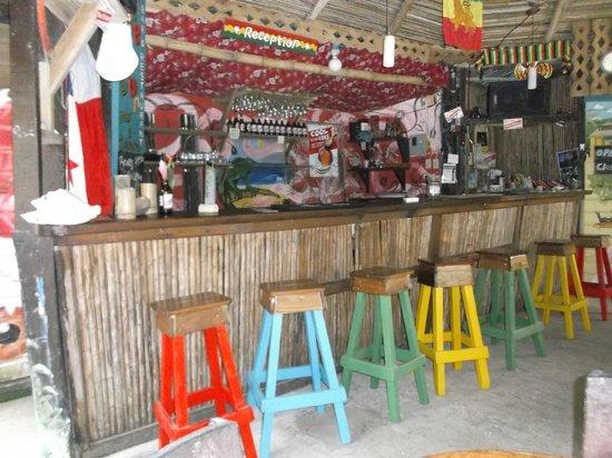 Hostal Mar e Iguana : Bar & réception.