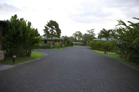 Arenal Manoa Hotel: Street view with beautiful landscaping