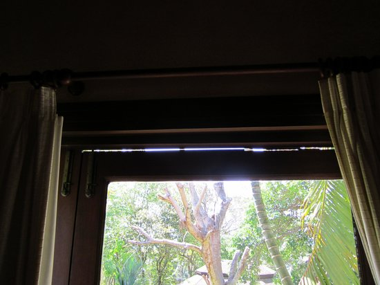 Mangosteen Resort & Ayurveda Spa: Gap in window