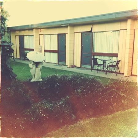 Cootamundra Gardens Motel: Gardens near the pool