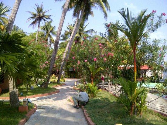 Cambay Palm Lagoon: walkway